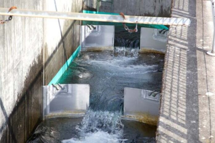 Developed a new technology for the purification of contaminated water from the textile industry